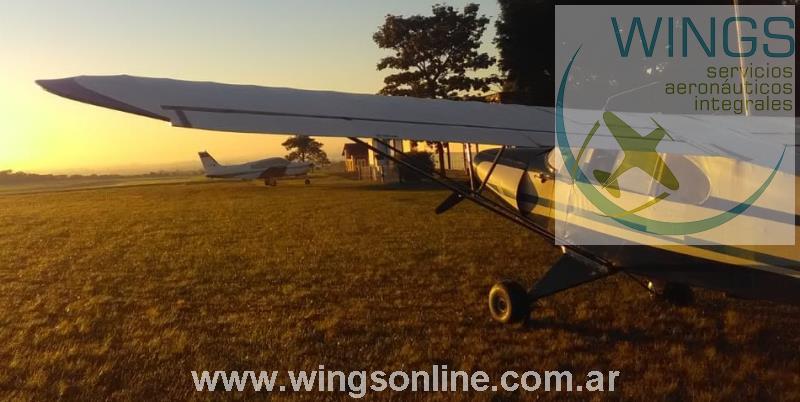 Piper PA-12
