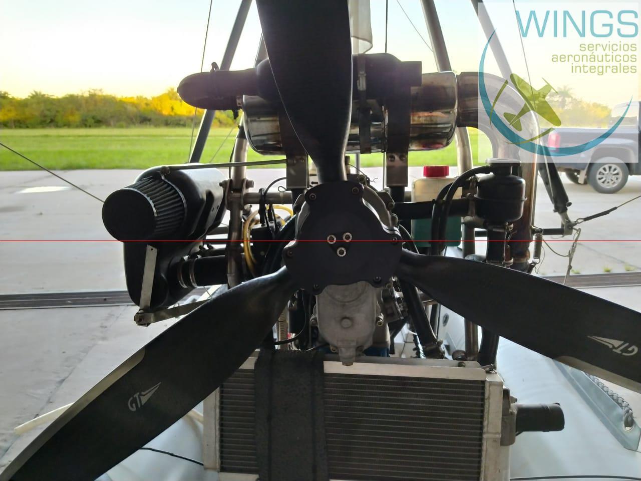 Anfibio Gomón Volador
